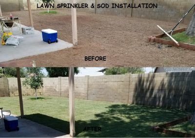 sod before & after